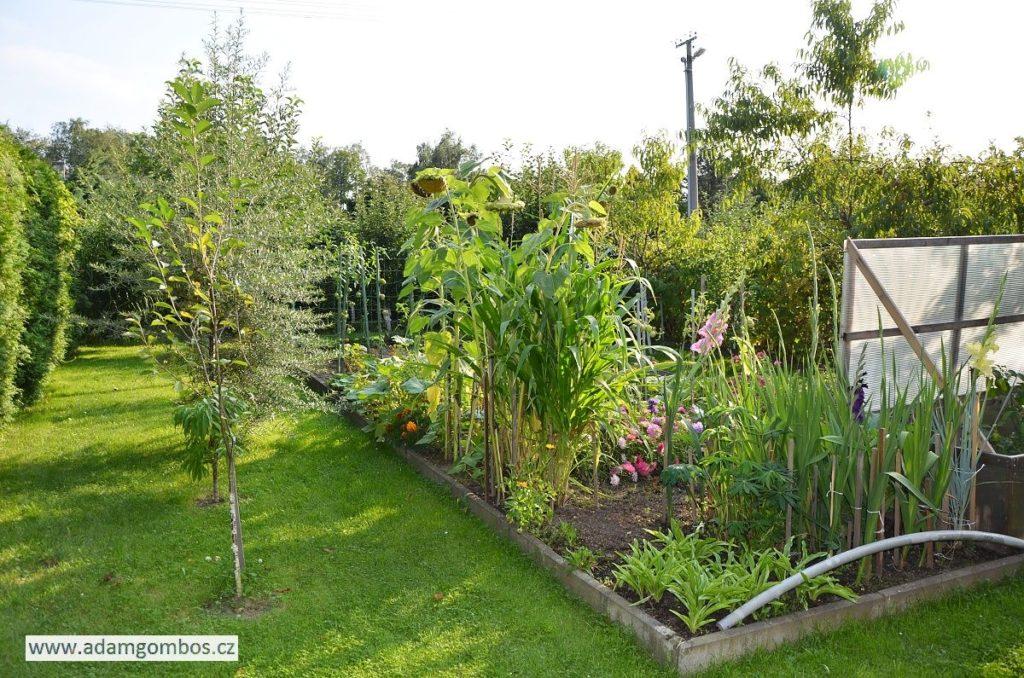 Zrekonstruovaná chata 2+kk s krásnou zahradou, Vratimov